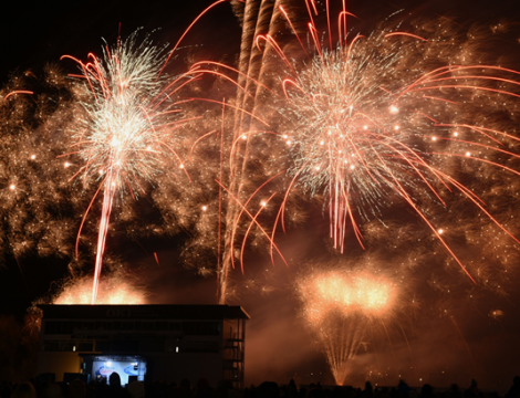 Fireworks (3)